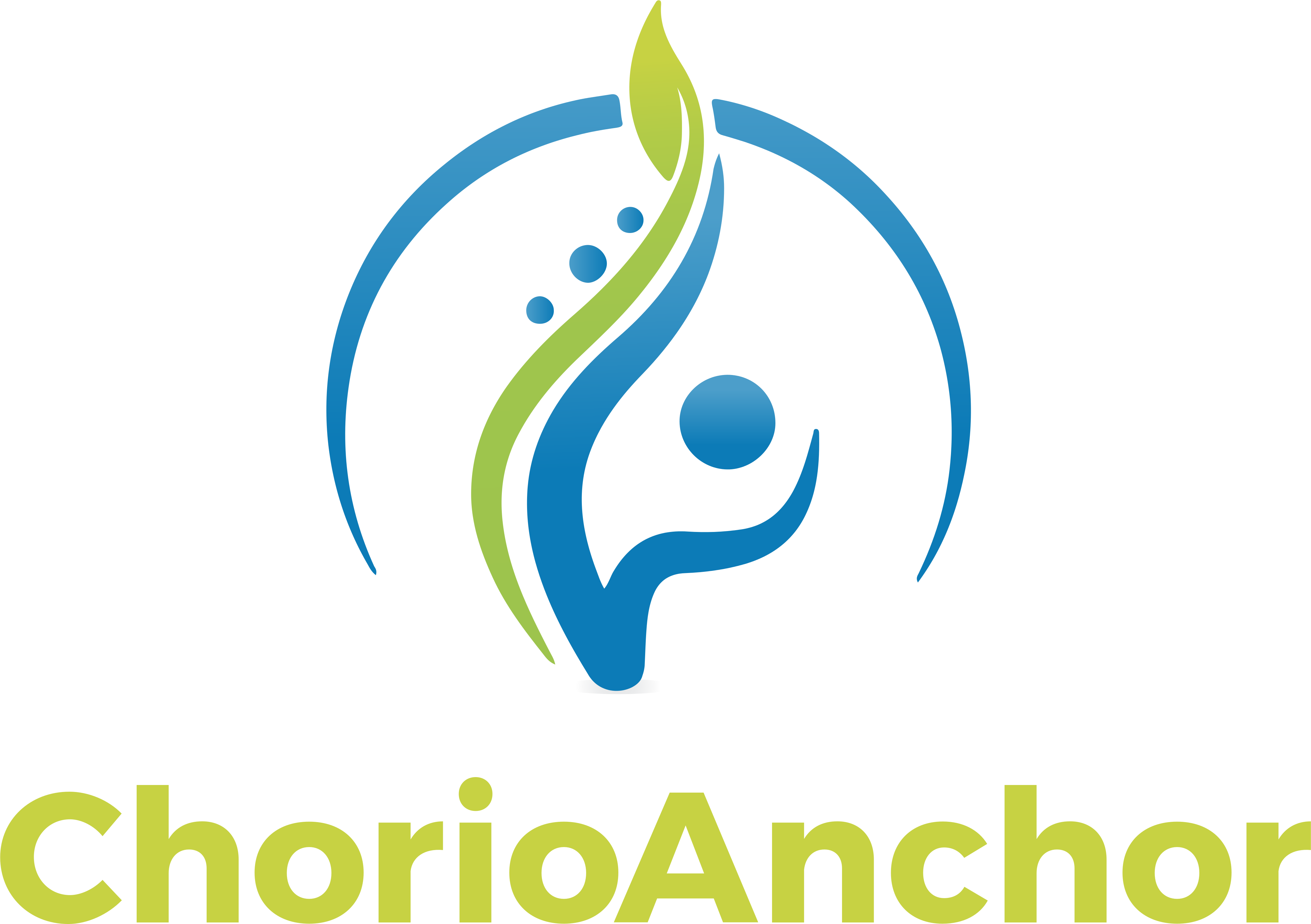 ChorioAnchor