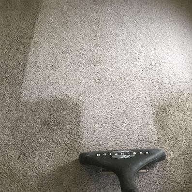 Why clean my carpets?