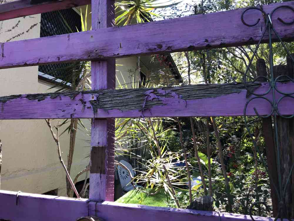 Termite damage to the fence Suburban Pest Management