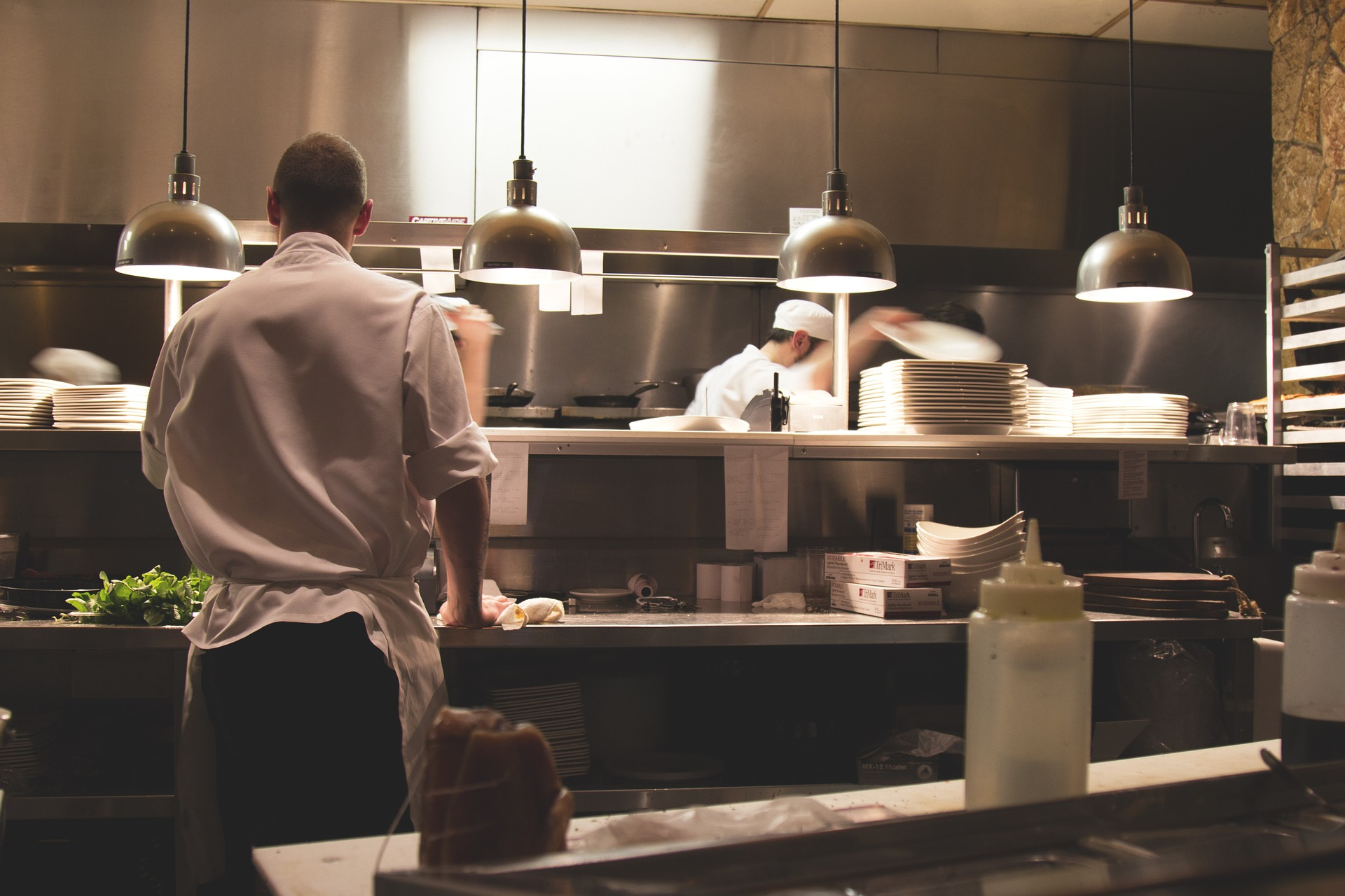 Best pest control assesses all areas of a sports club including kitchens