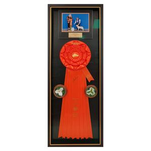 medal frame