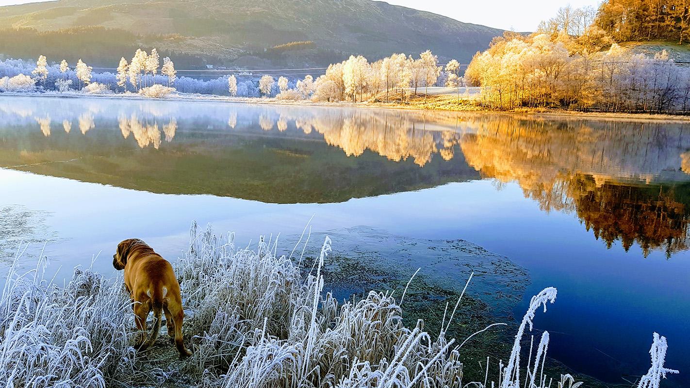 Winter at Solneset Gård outside Bergen, Norway