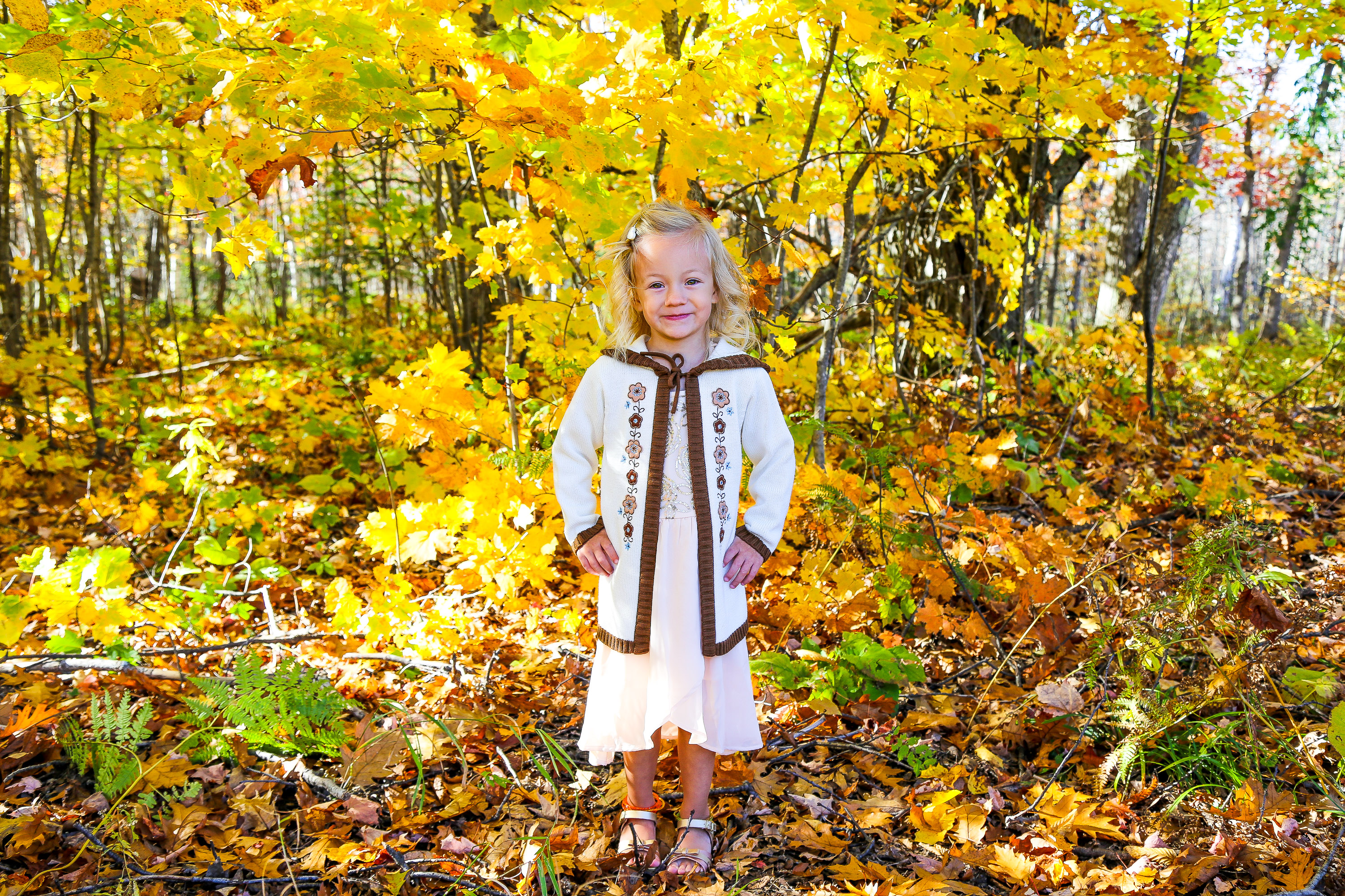Portrait photography fall mini session of Fiona Jane Olson, located in Mohawk, Michigan.