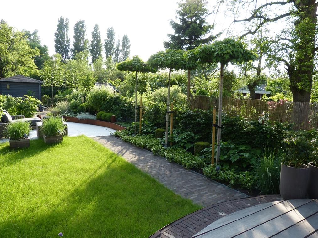 Een vijfentwintig meter diepe achtertuin midden in de stad in Haarlem
