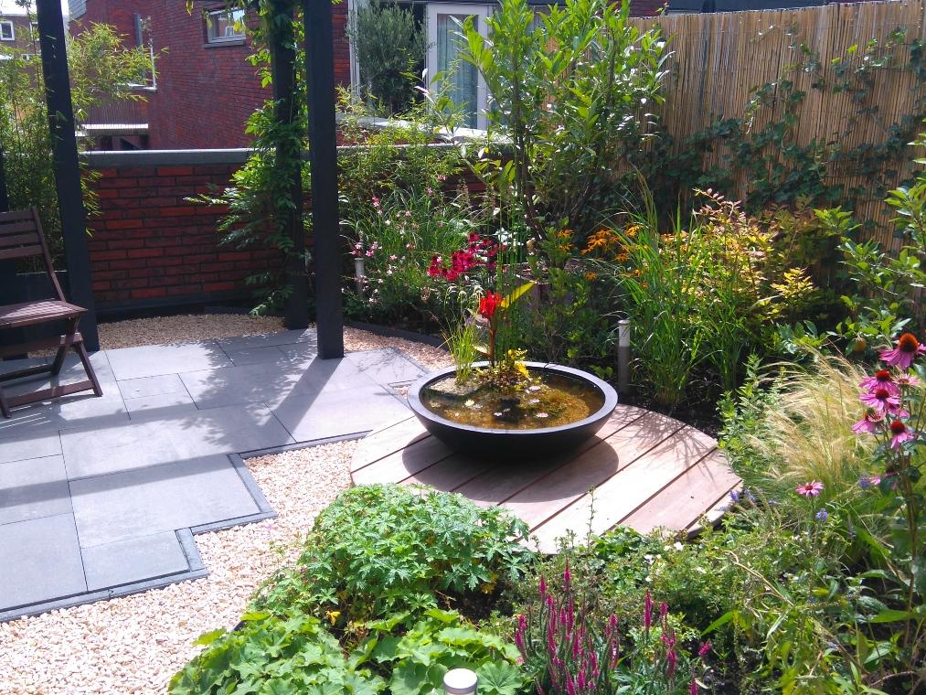 Een kleurrijke daktuin in Haarlem
