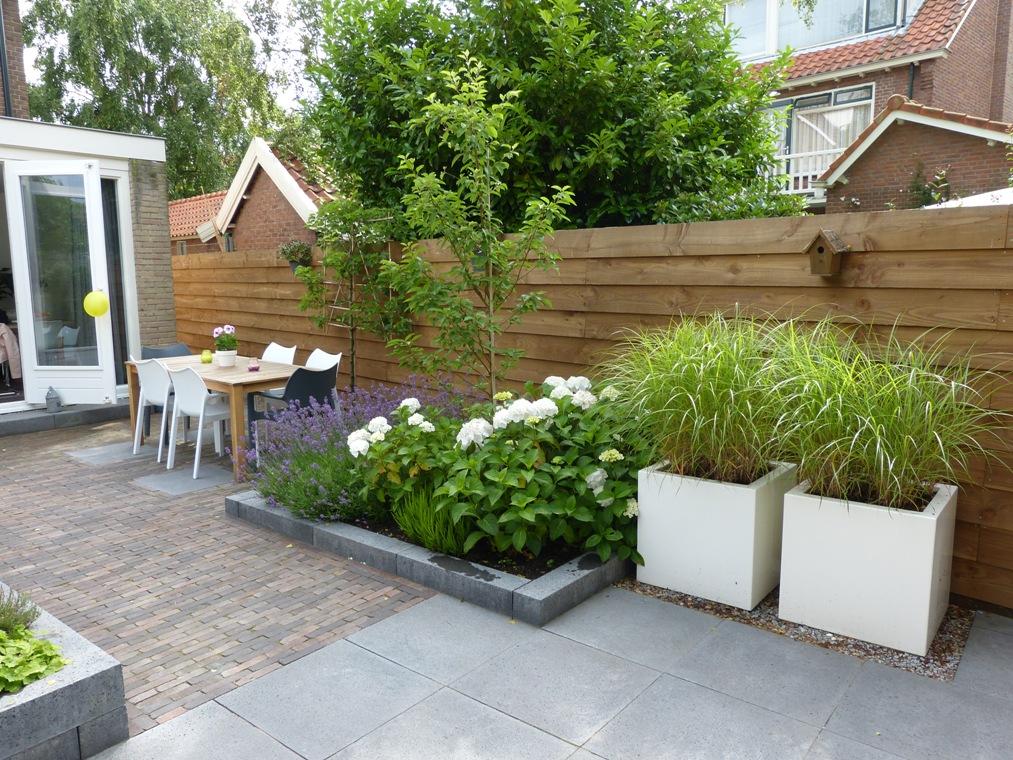 Verhoogde borders met beplanting delen de tuin in tweeën.