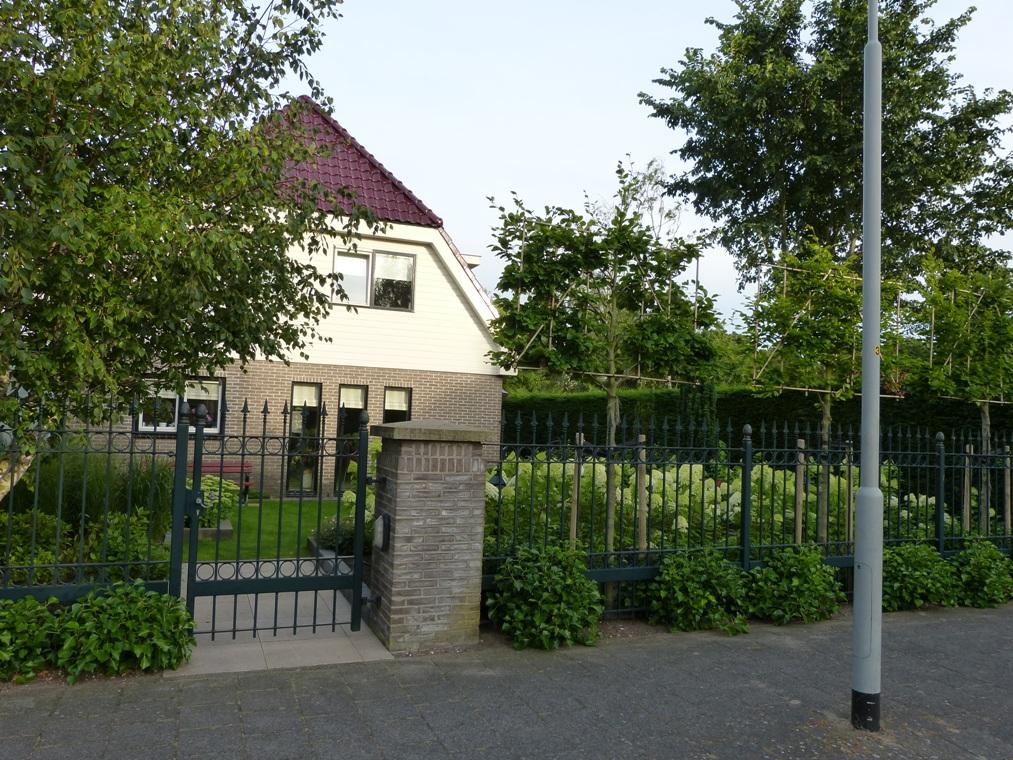 De pluim hotensia's zijn zowel vanuit de woning als vanaf de straat te zien.