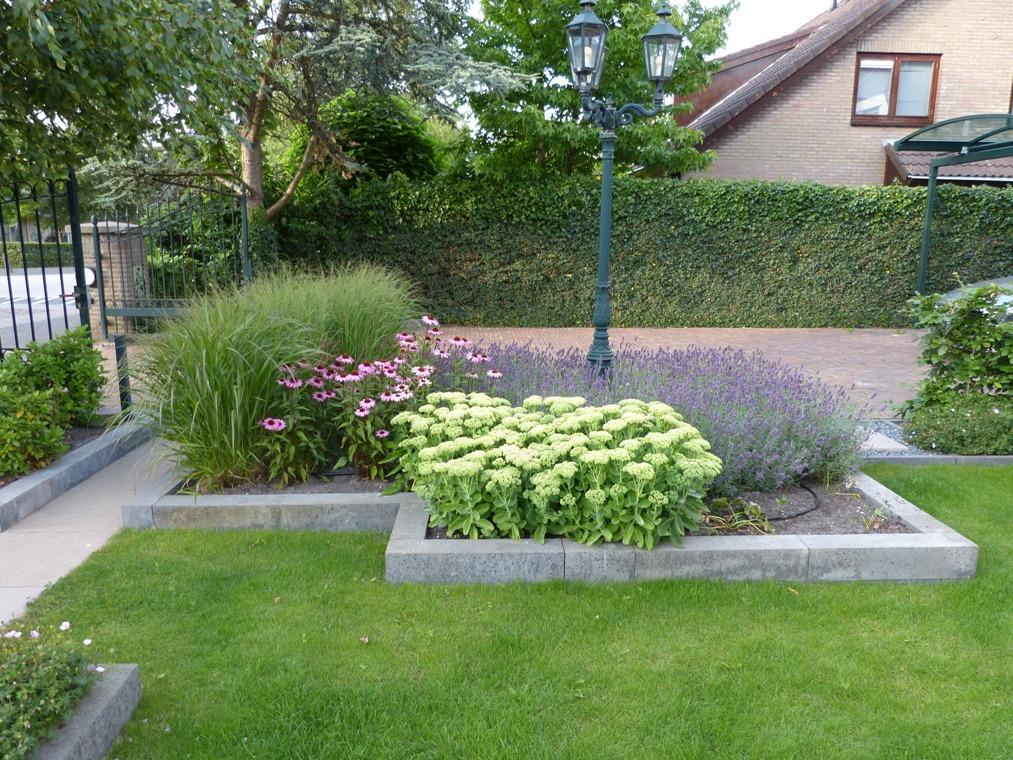 Licht verhoogde border met siergrassen, lavendel en vaste planten.