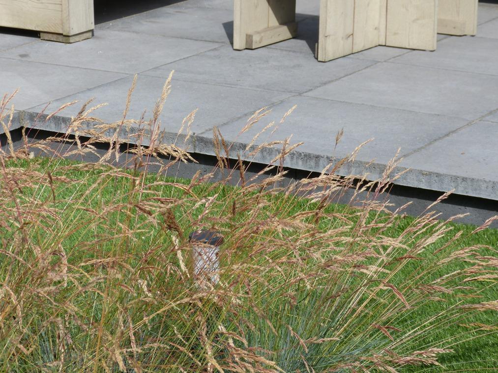 Het verhoogde terras van Schellevis tegels.