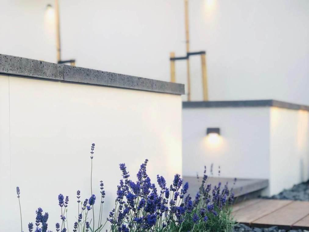 Betonlook muurtje met lavendel