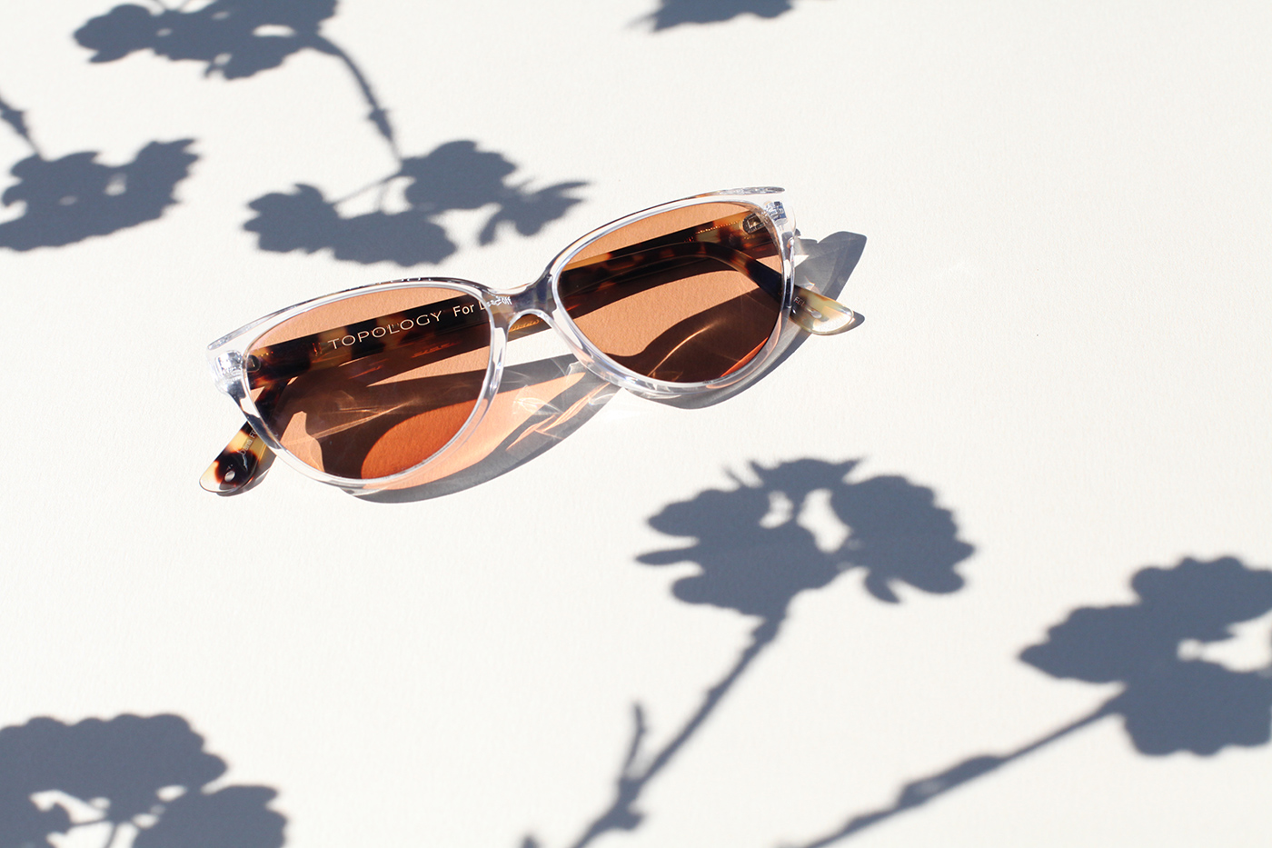 73190c62fa5cf Jamie s Octavia in Crystal and Turtle with Brown Transition Progressive  Lenses.