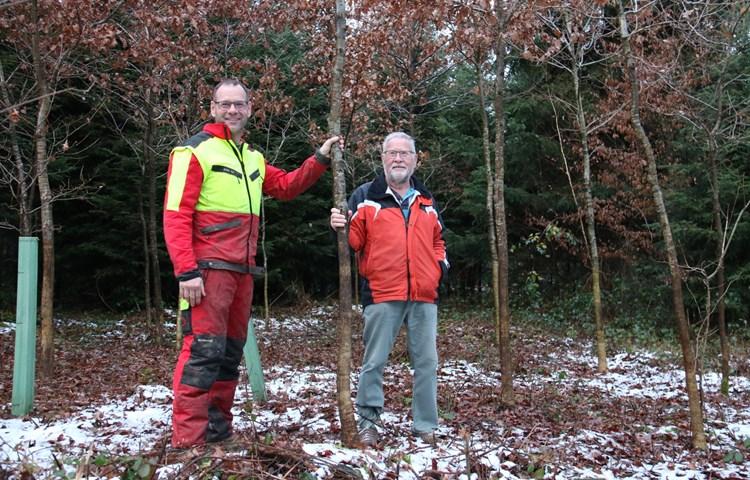 Waldpflege – ein Generationenwerk im Dienste aller