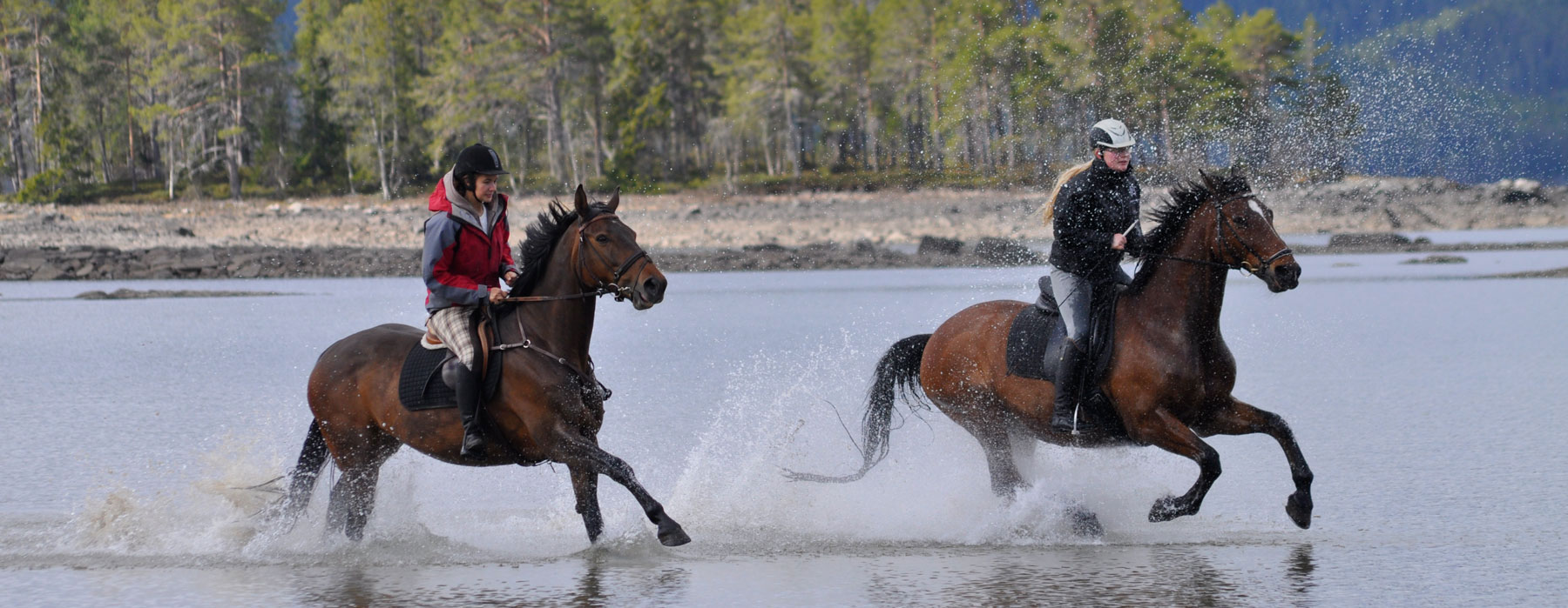 Ridesenteret i Rauland (Horseback Riding Centre)