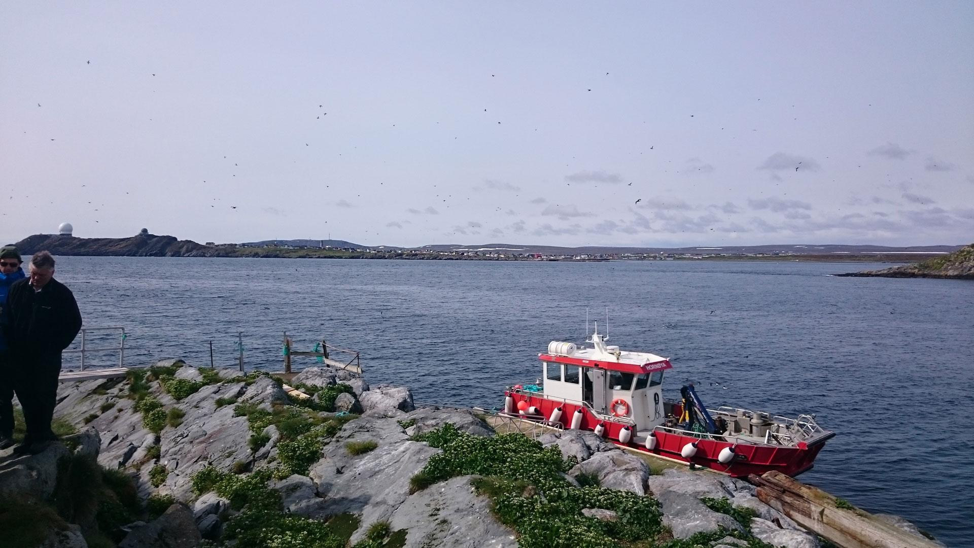 Vardø Havn KF