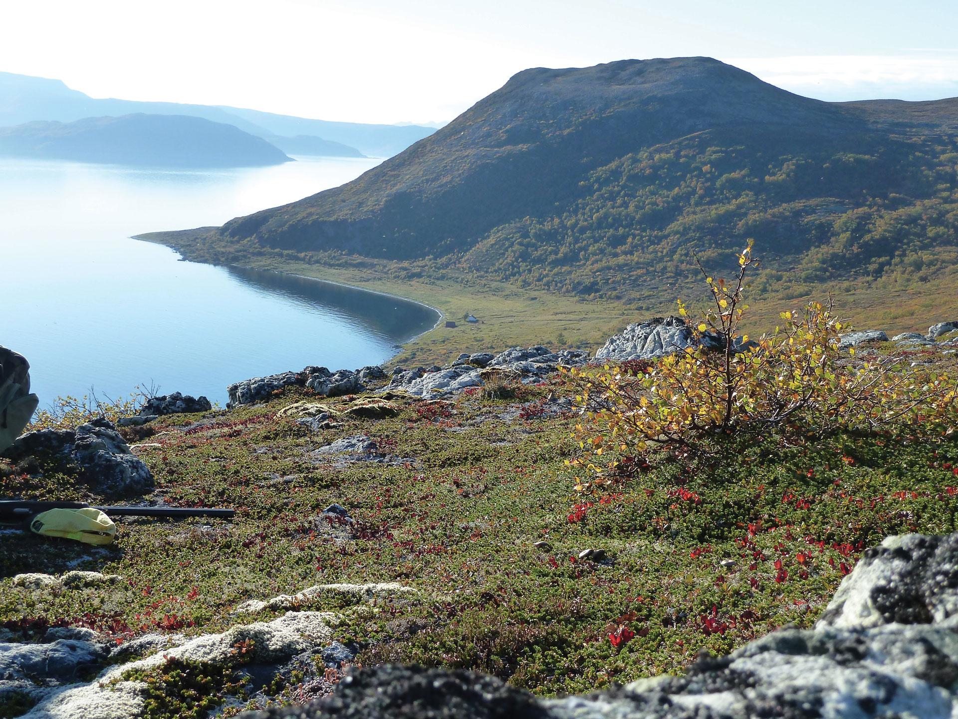 Øyriket – Arctic Islands