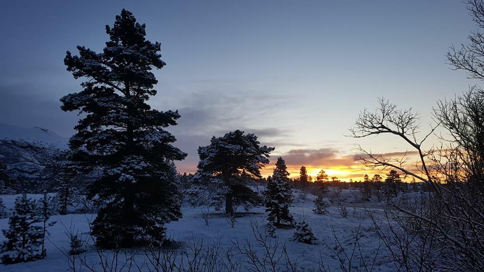 Fjordutsikten Motell & Camping