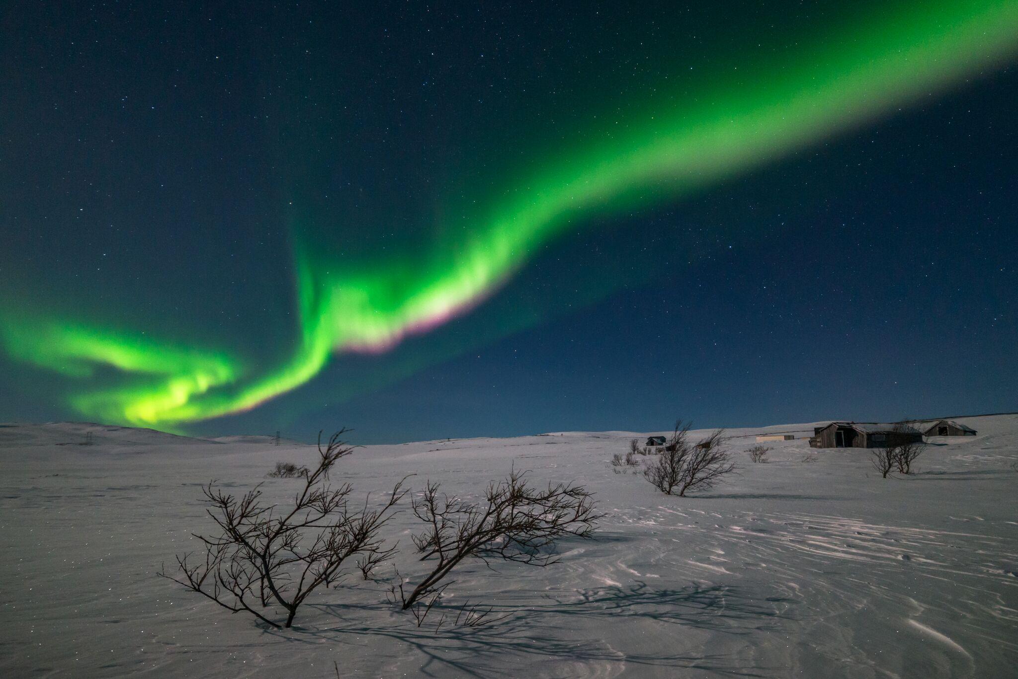 Arctic Expedition Alta