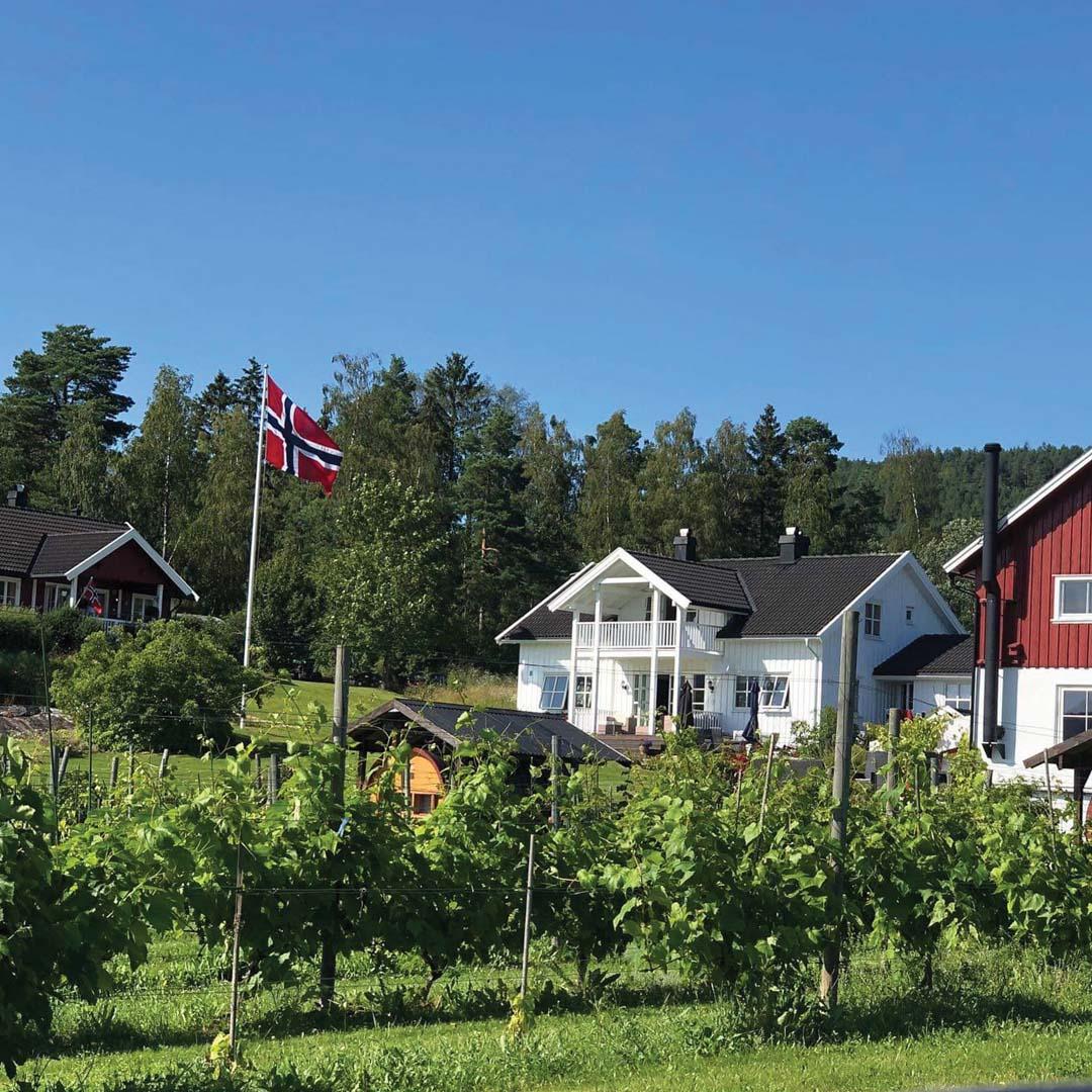 Lerkekåsa Winefarm