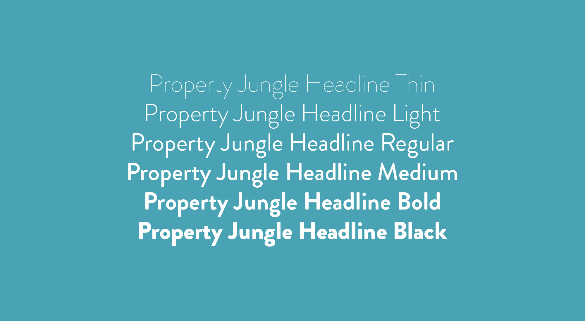 brand font and assets