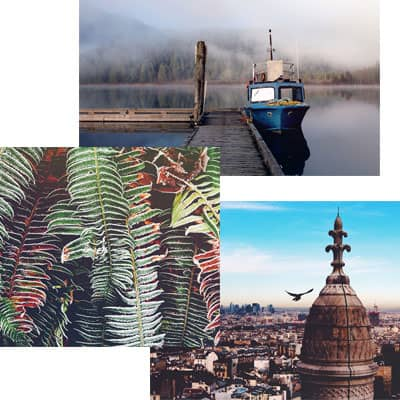 Liza Surova: web design and web development for a nature photographer based in Vancouver, Canada.