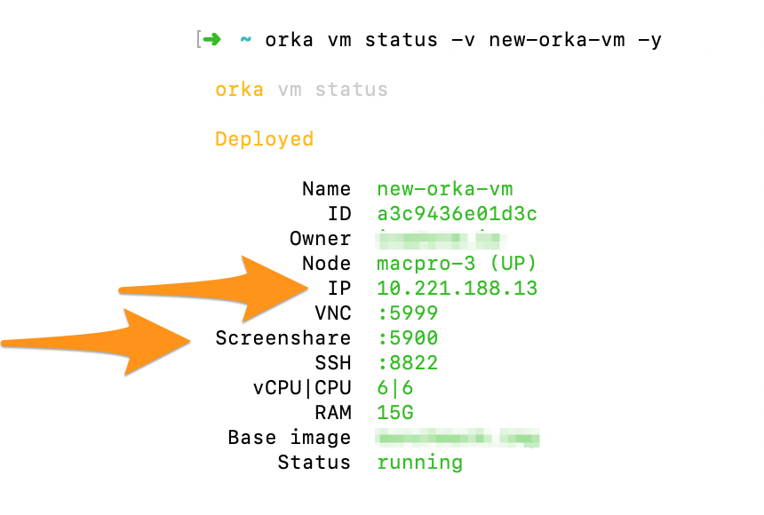 Orka CLI displaying VNC and Screenshare details