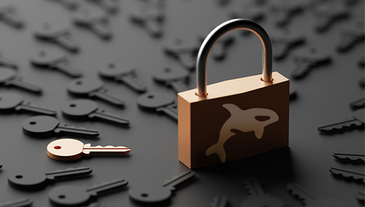 Lock with Orka logo surrounded by keys
