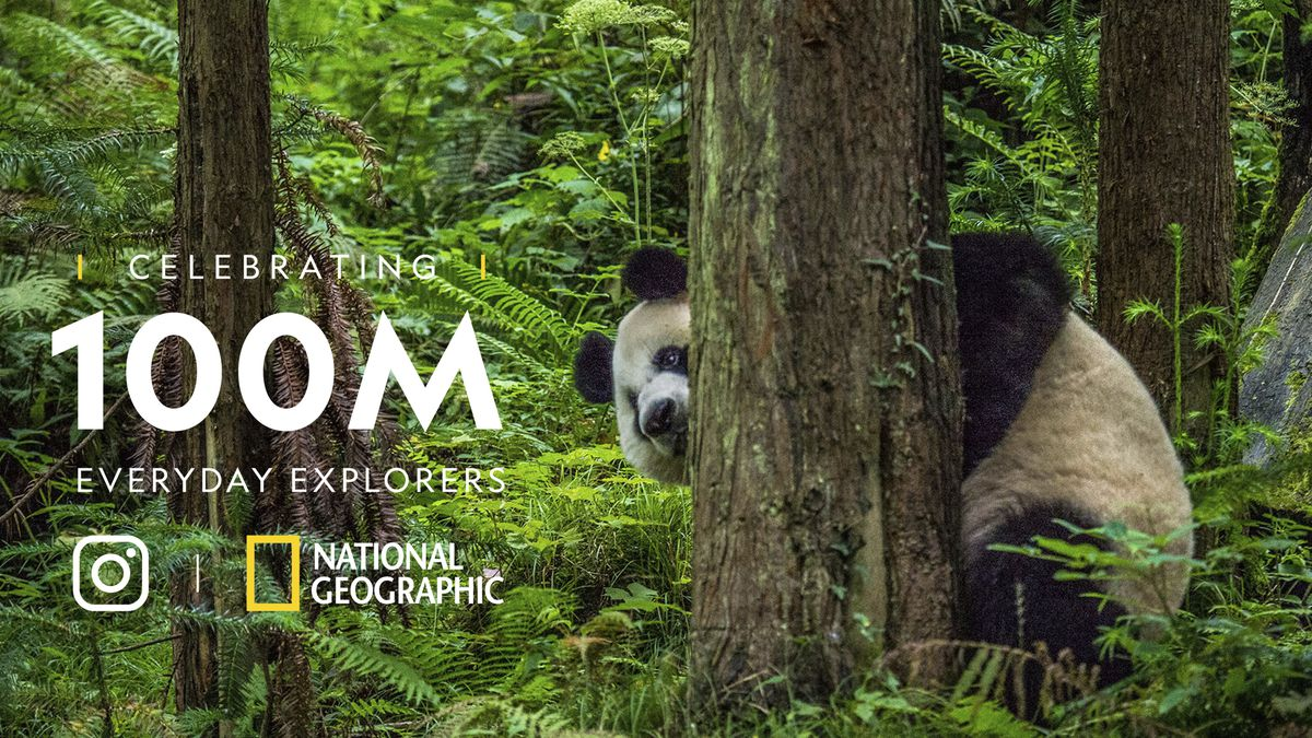 national geographic social media example 100M every day explorers