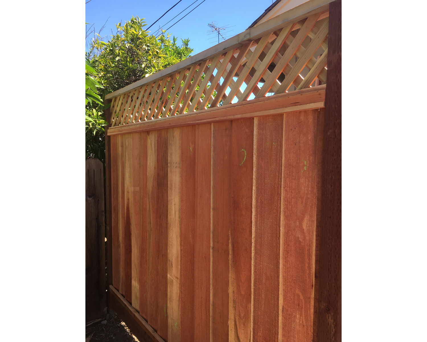 san-jose-ca-picture-frame-louvered-fence-with-1-diagonal-lattice