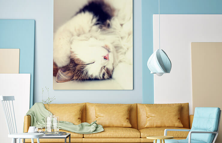Canvas Wall Prints