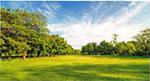 Landschaftspflege in Parkanlagen