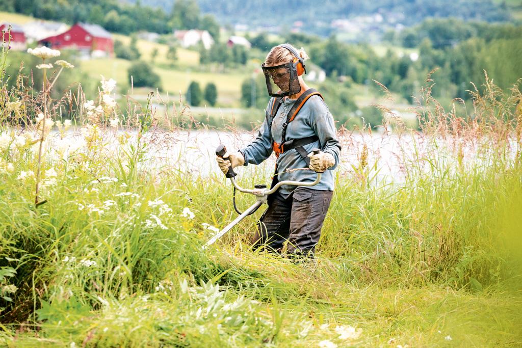Egal, auch hohes Gras stellt für Stihl-Geräte kein Problem dar