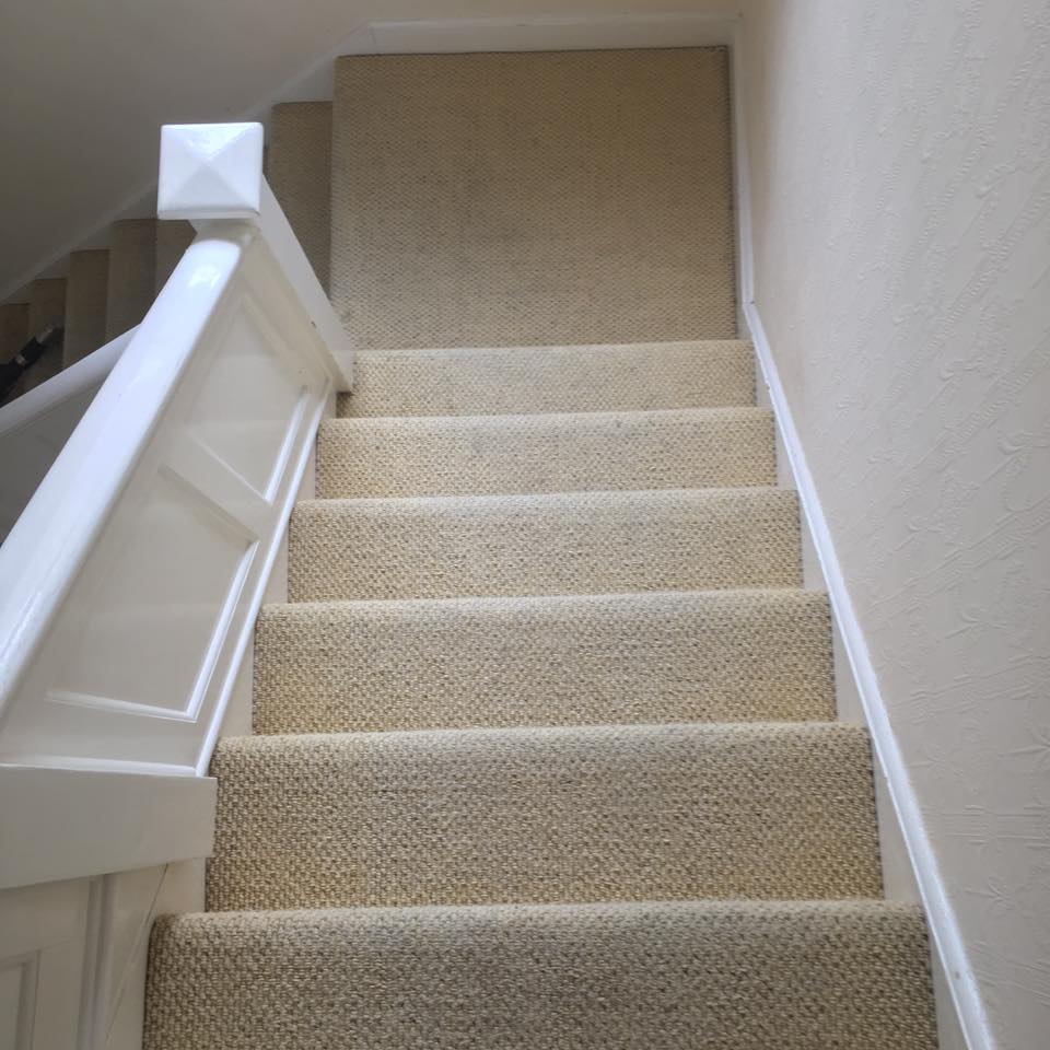 clean carpet image