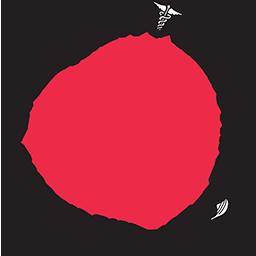 BMH Logo