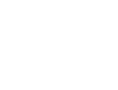Special Expertise Icon