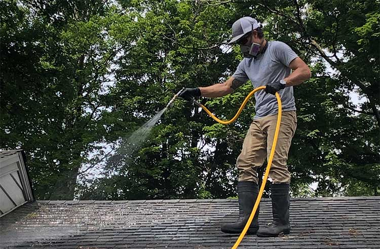 roof cleaning hamburg