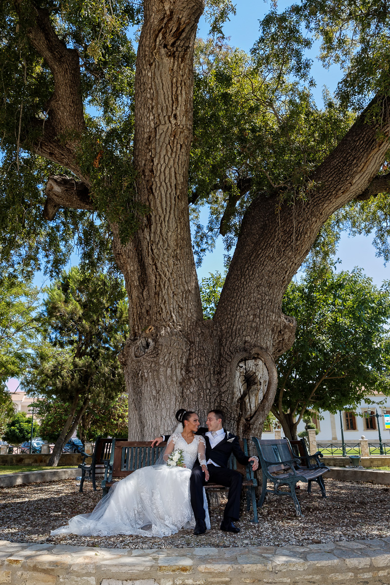 wedding photography in the gardens by a big old tree