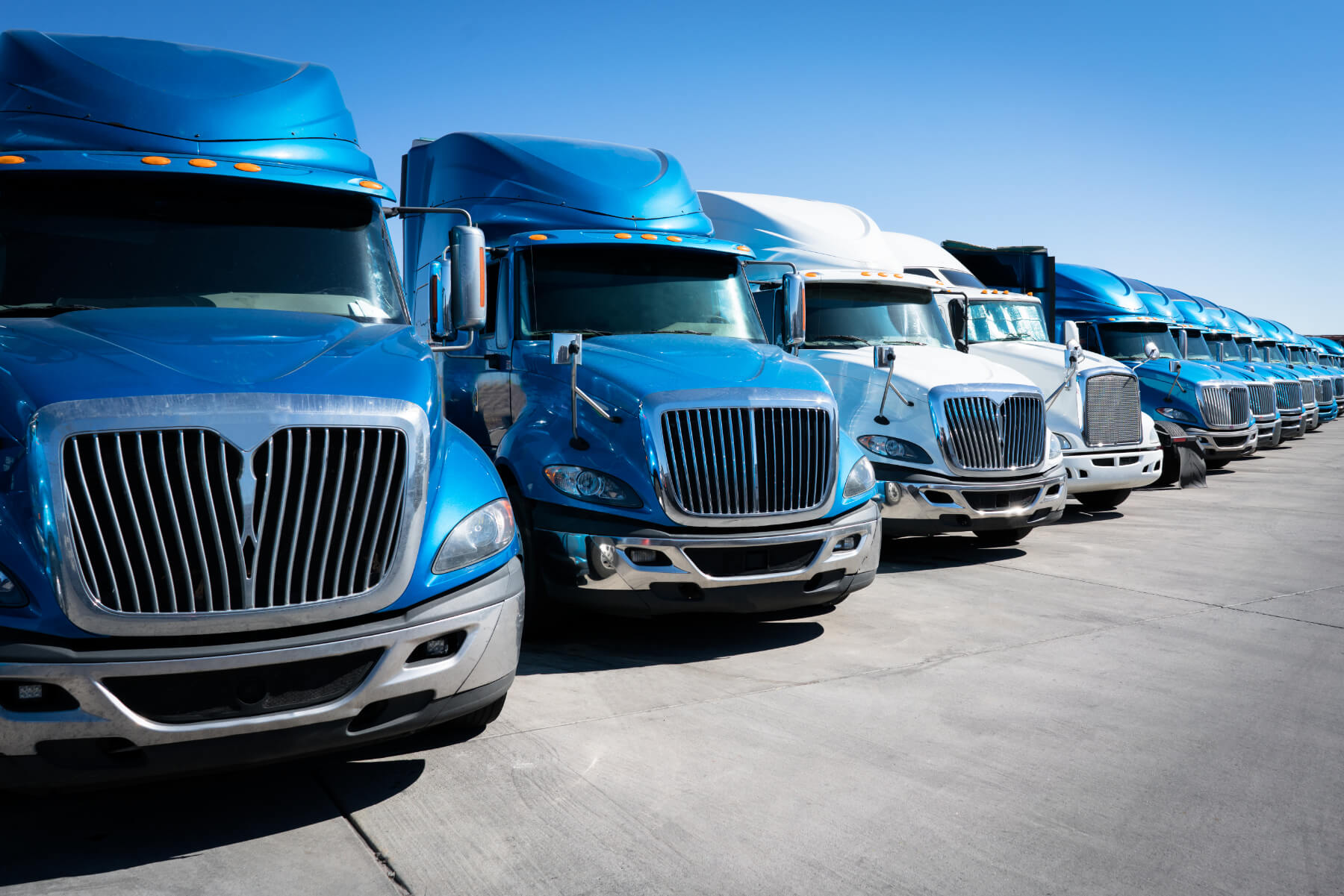 Fleet of blue trucks