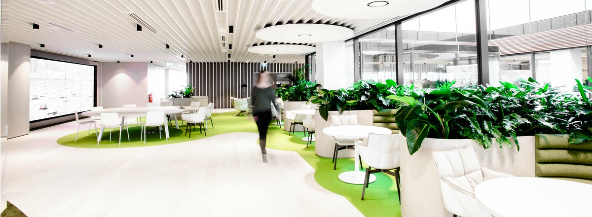 Biophilic office design with large plants