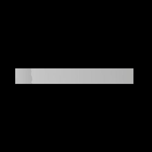 Logo Ravencasa MadSpider