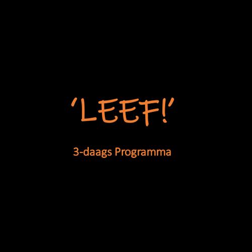 Logo Leef MadSpider