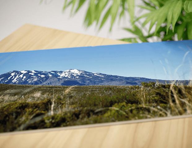 Panorama Prints