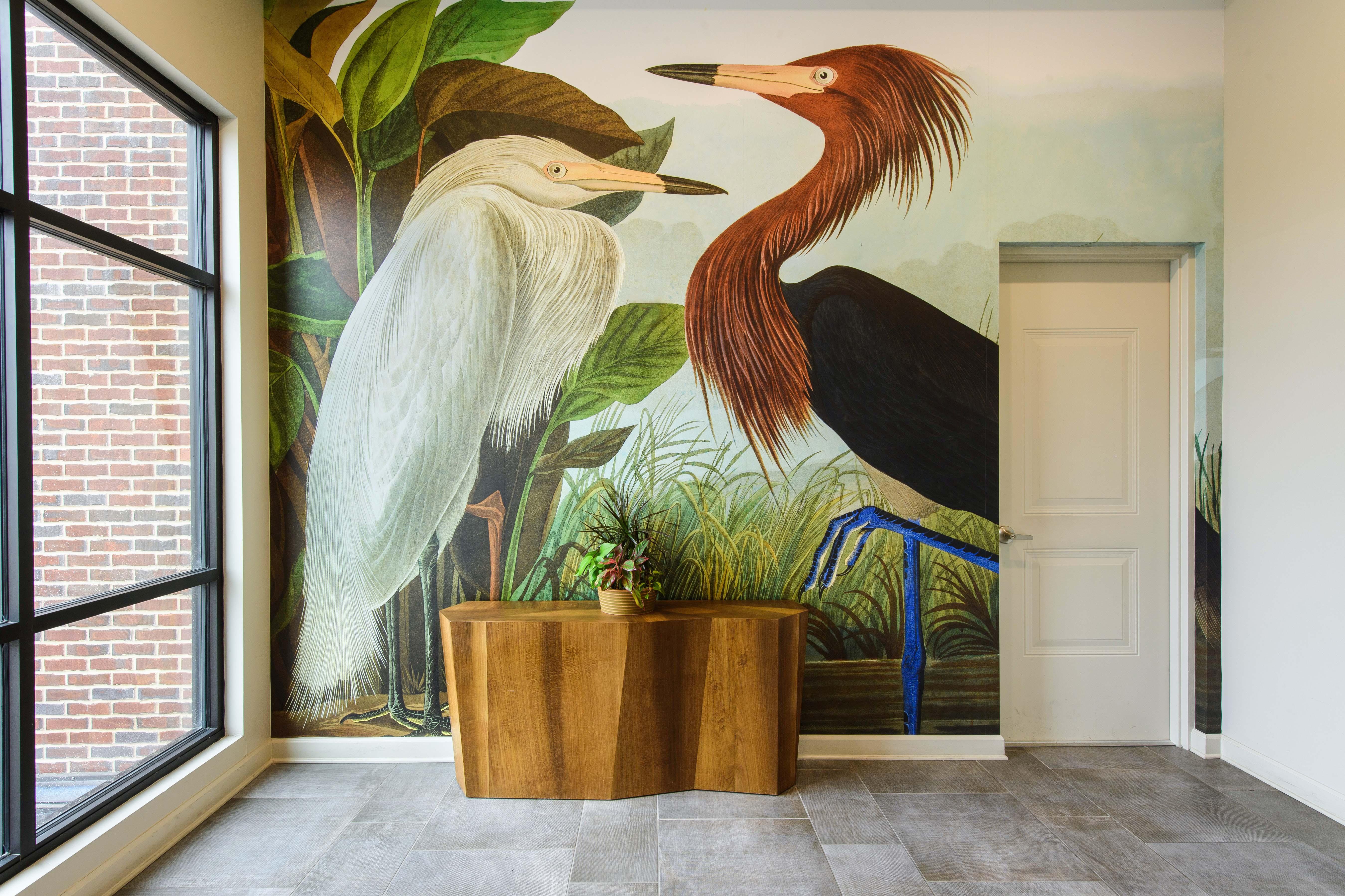 SURFACES Heron