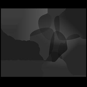 Focus Brasil