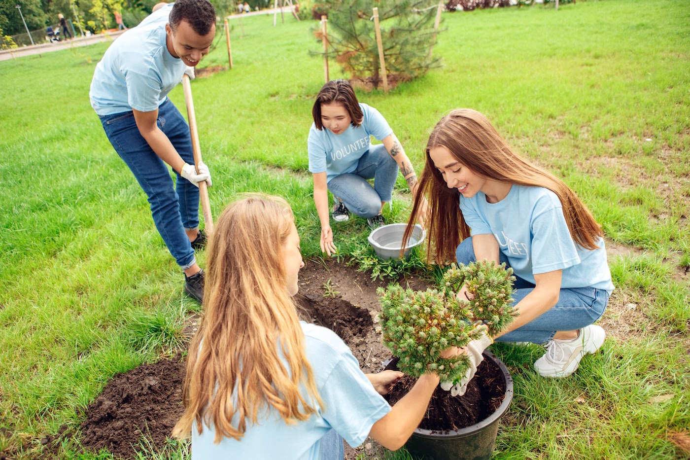 how to start a non profit: volunteers planting a tree