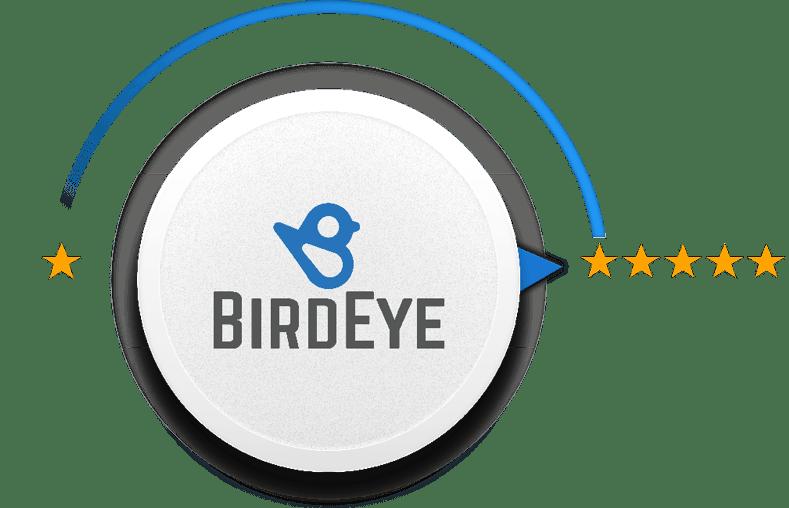 BirdEye Review Control