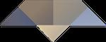 Breakthrough services icon