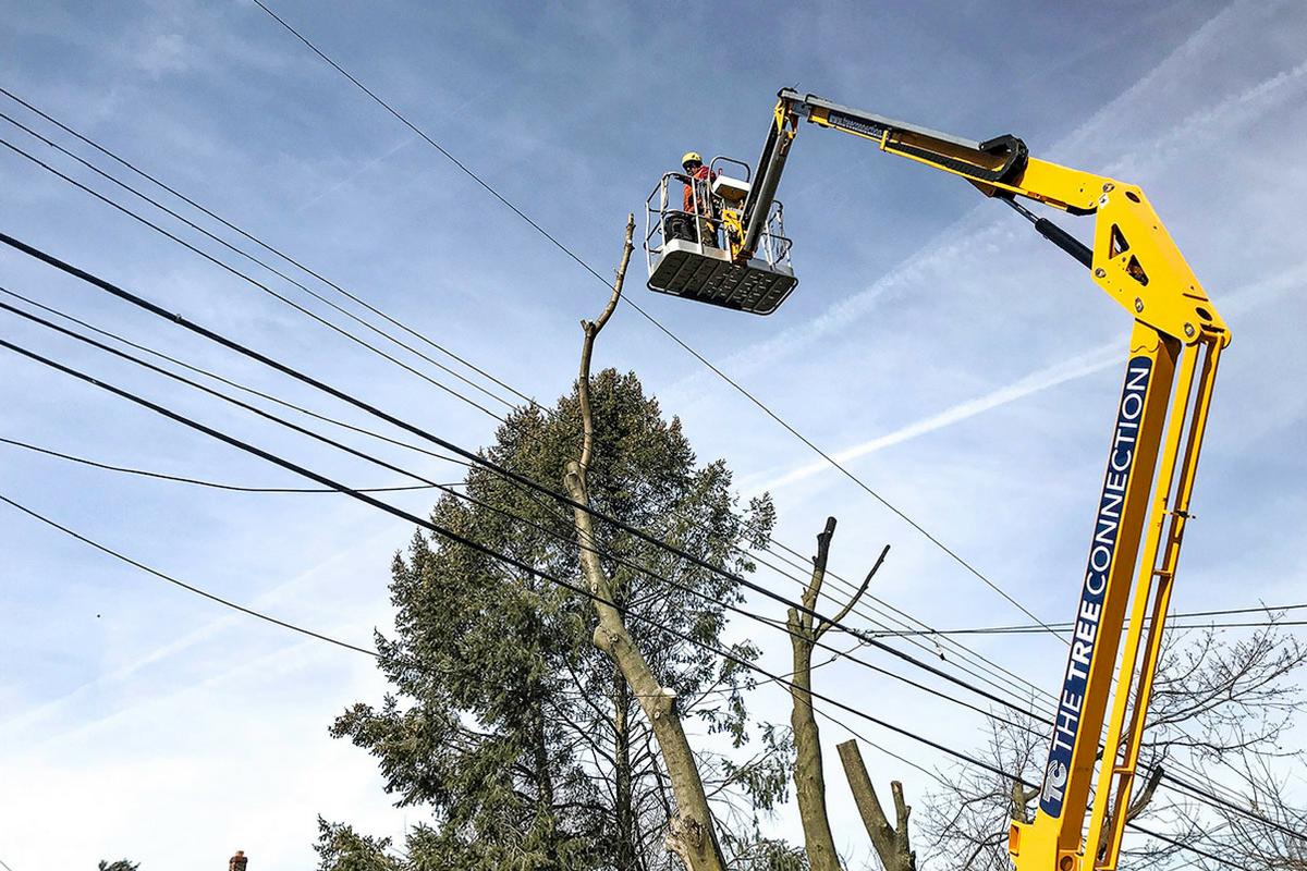 utility line maintenance