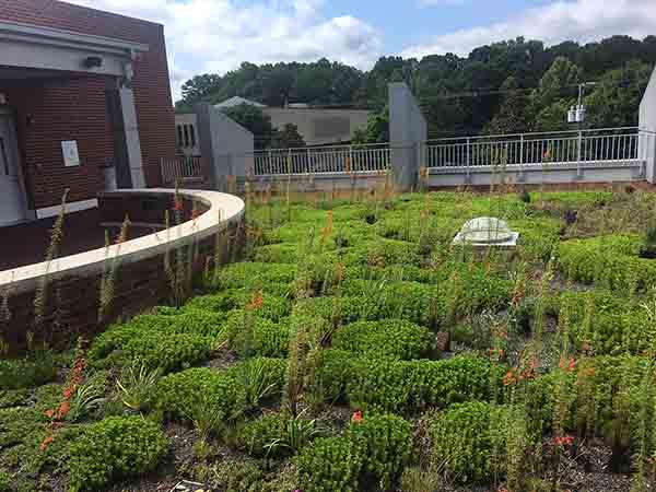 Green Roof - Living Roofs Inc - Schiele Museum, NC - Public Green Roof