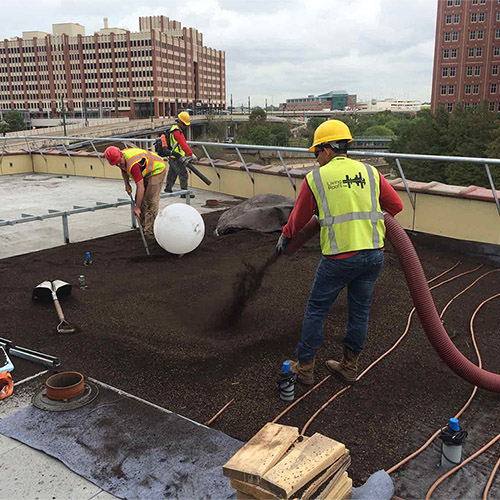 Green Roof - Living Roofs Inc - Houston, TX - Commercial Green Roof