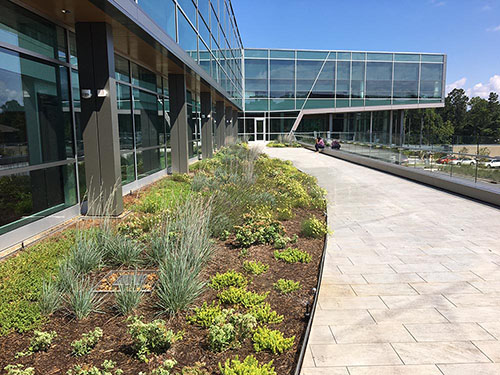 Green Roof - Living Roofs Inc - Hendersonville, NC - Public Green Roof